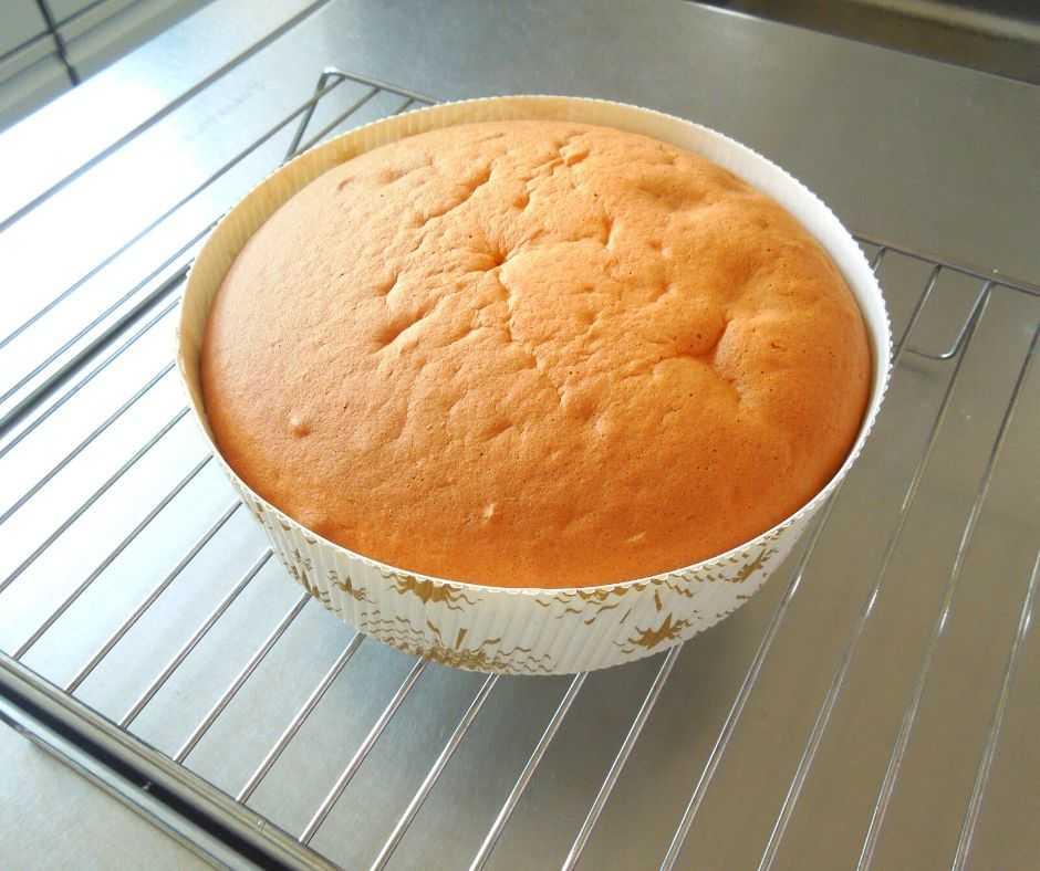 ケーキ生地